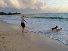 Doggie fun in Dar es Salaam