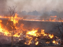 Veld fire in August