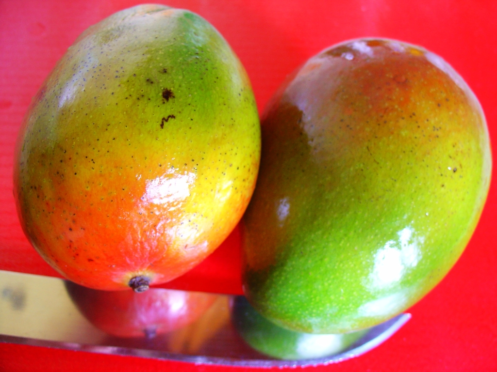Juicy ripe mangoes