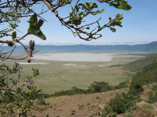 Ngorongoro Crater, Garden of Eden.