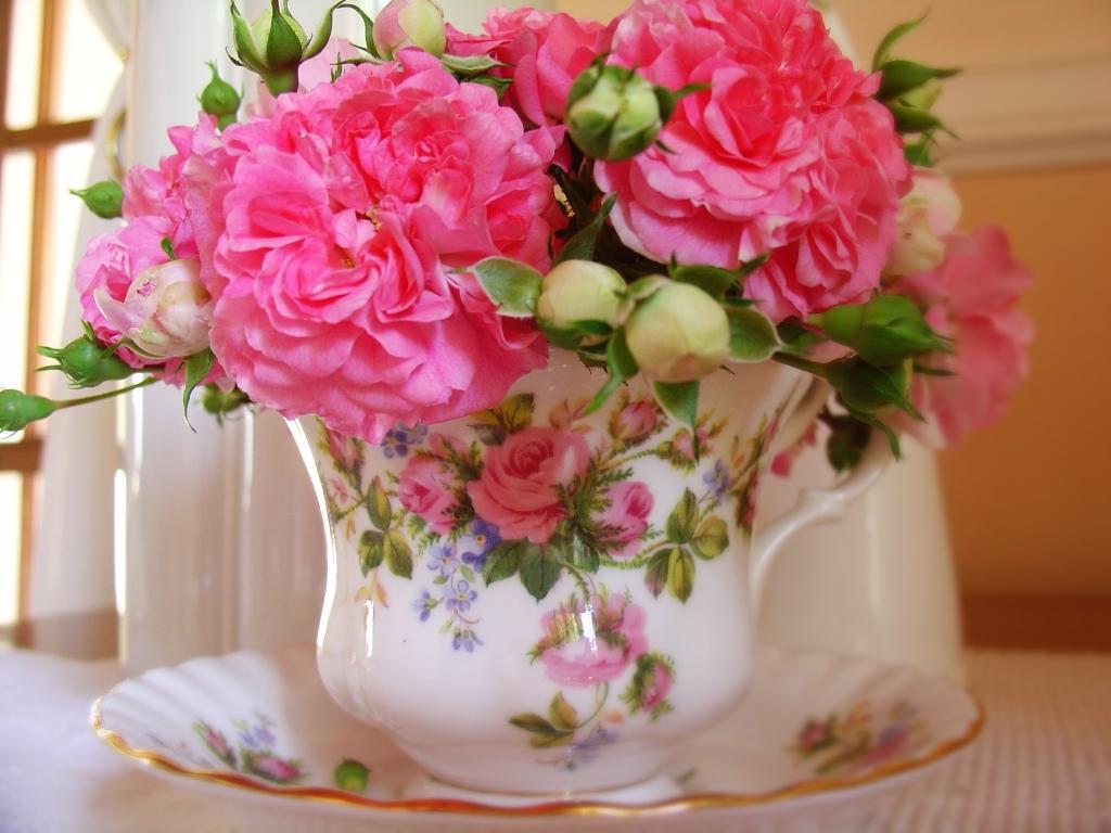 rosies 1